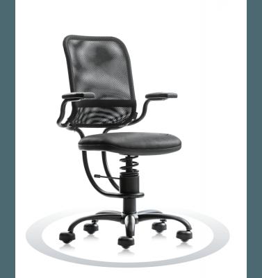 Sedia ergonomica spinalis ergonomic a prezzi economici - Sedia ergonomica prezzi ...